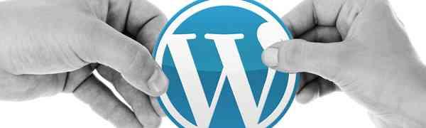 Astuces SEO pour Wordpress